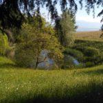 Itinerario 25: Sentiero Enrico Romanazzi, itinerario della biodiversità