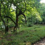 Itinerario 51 – Follina, Tre Ponti, Fratte di Follina e Zuel di Qua